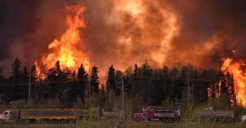 Wildfires 2