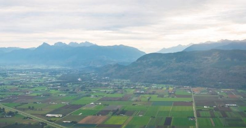 fraser valley closed off 2016 with gains