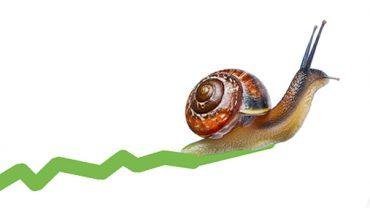 snail-graph-slow