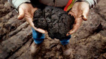 tar-sands-in-hands1