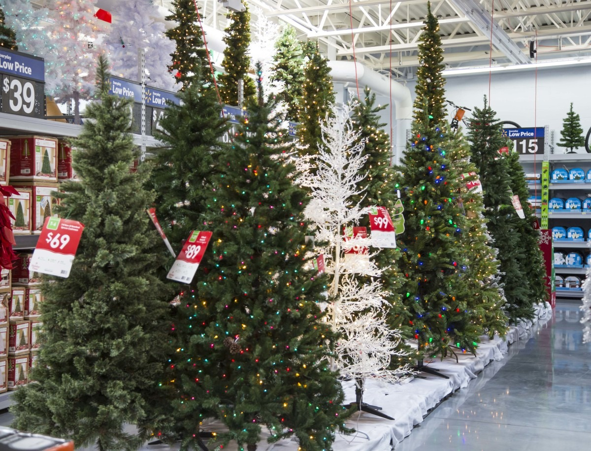 Christmas Trees' Prices On The rise And It Is Ridiculous